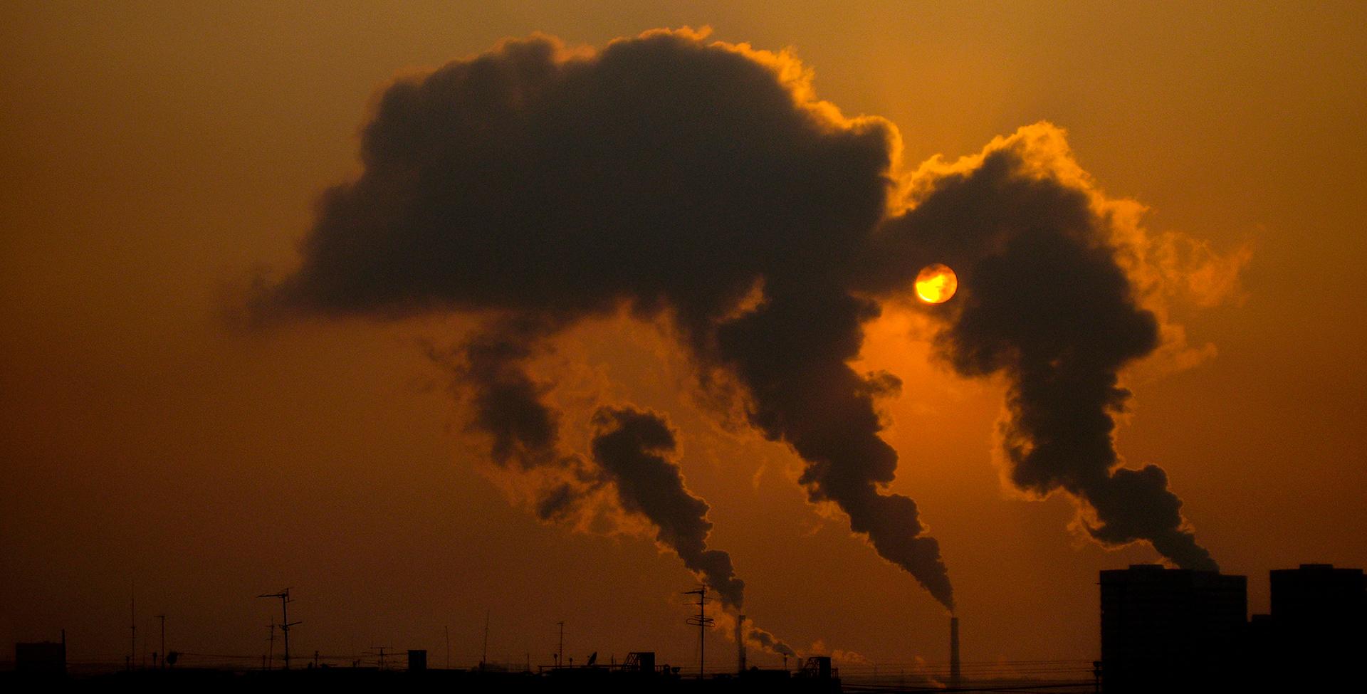 Elephant, Almaty, ecology, smoke, ecology, smoke, Kazakhstan, smog